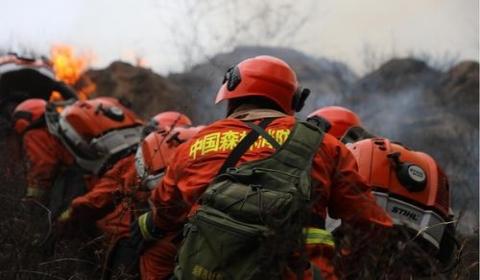 2020年如何认定森林火灾?发生森林火灾如何处罚?